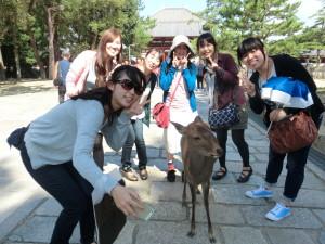 東大寺 鹿と一緒にチーズ