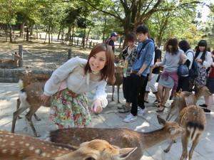 東大寺の鹿に興奮!!