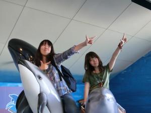 イルカに乗ってイエーイ